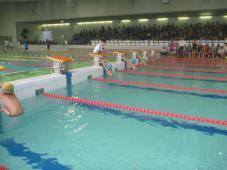 クラブ対抗水泳競技大会