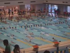 水泳大会に参加!