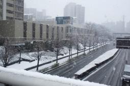 もうすぐ春?まだ冬?