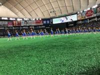 東京ドームでチアダンスを披露