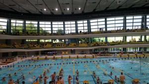 水泳大会の応援に行ってきました!
