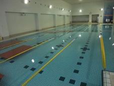 水泳は素晴らしい!
