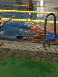 泳ぐコツ!?