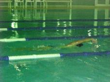 「早く泳ぐため」に効果的な練習内容