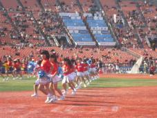 チア 横浜スタジアムで熱い声援!