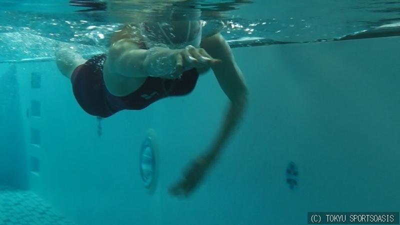 自分の泳ぎを見る!:オアシス本...